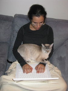 Me. The Mac. Penelope the cat. She's likes getting involved.